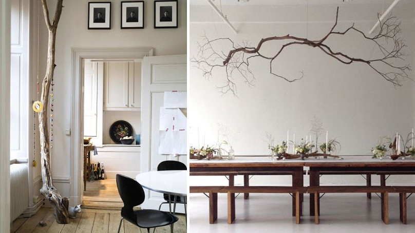 trees and tree branches interior decor