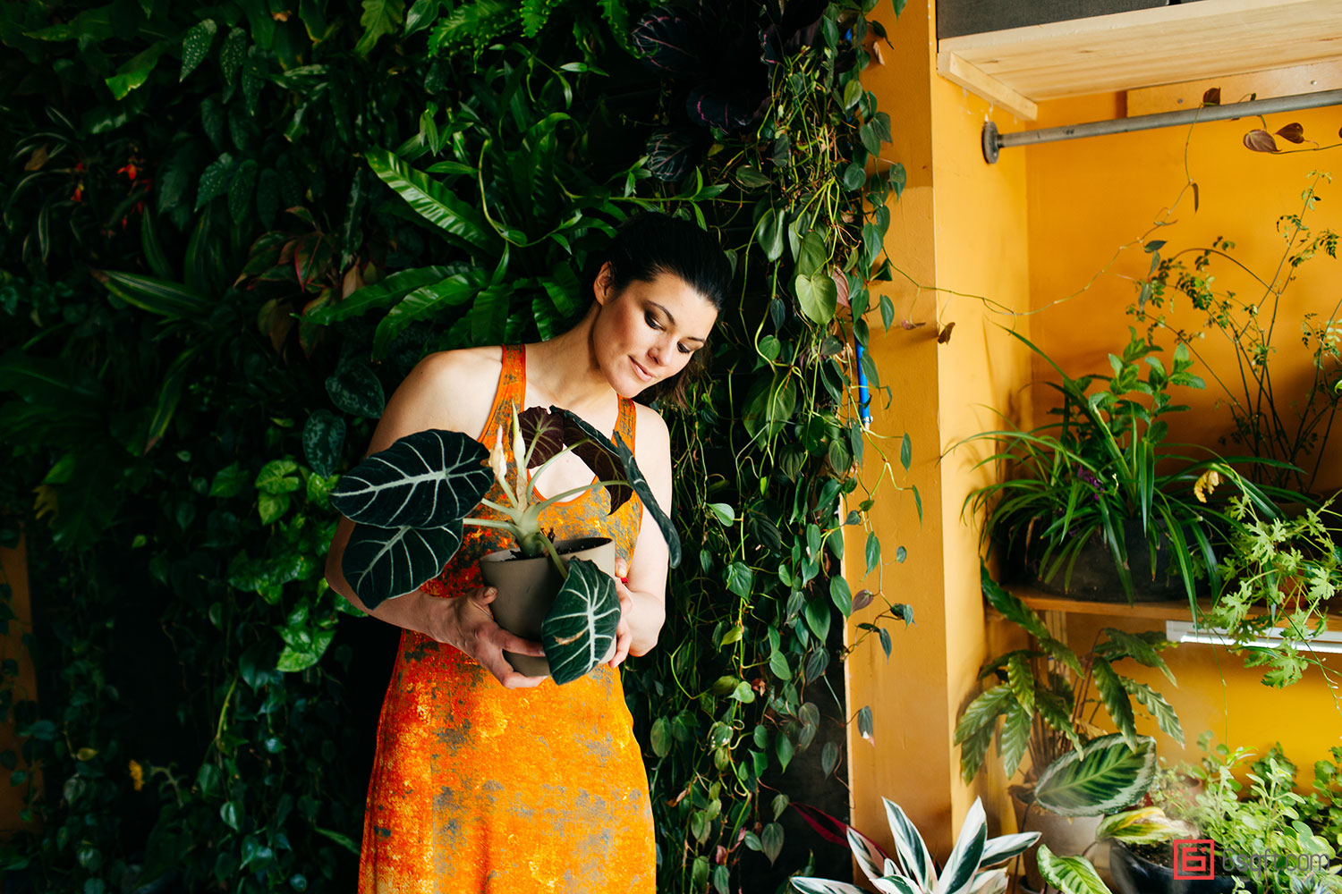Model Summer Rayne Oakes, plant-filled apartments, Model Summer Rayne Oakes apartment, eco Model, Summer Rayne Oakes, model apartments, plant inspiration, how to grow plants indoors, best plants for apartments, williamsburg lofts