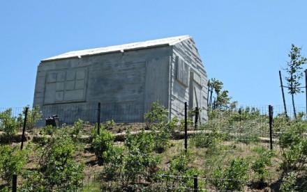 rachel-whitereads-concrete-cabin