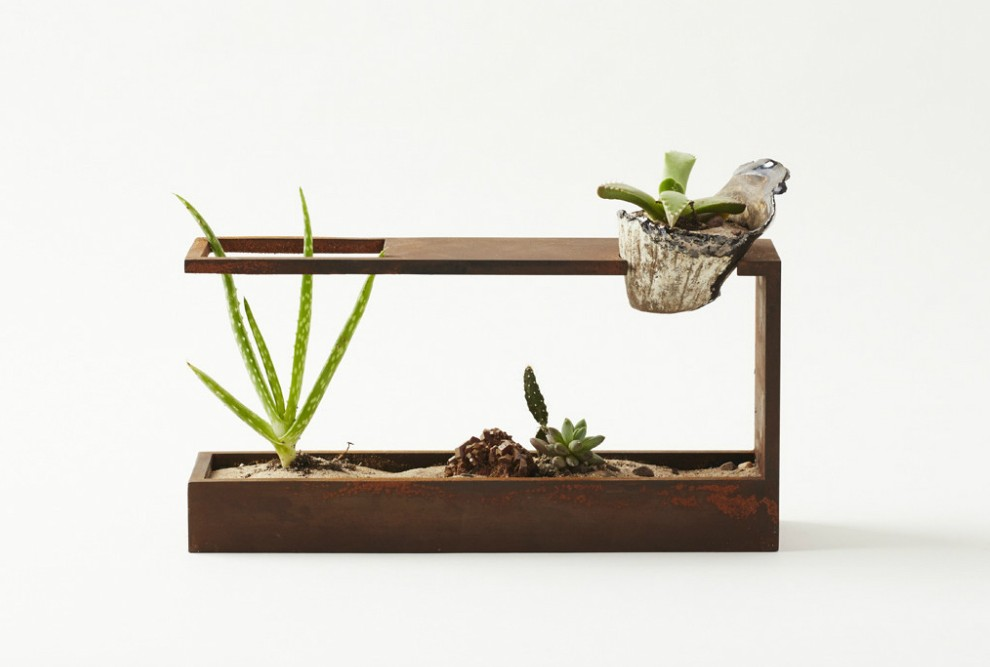 Spruce Up Your Desk With Plant In City S Modern Mini Terrarium 6sqft