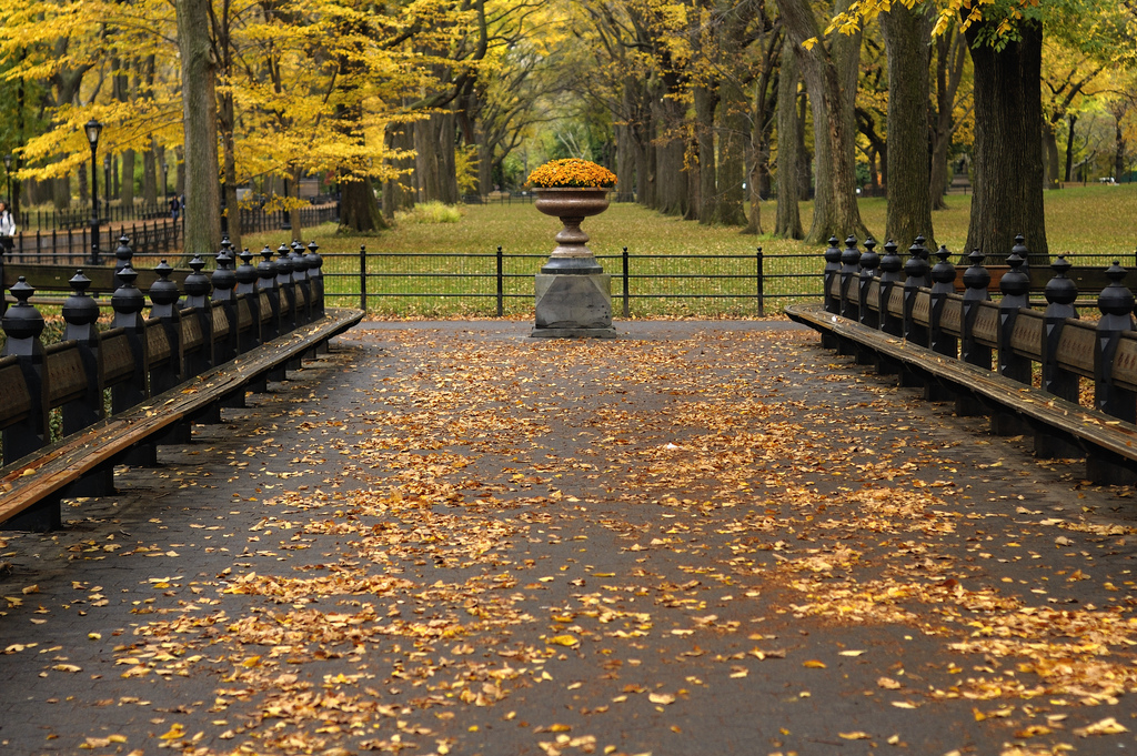 Most Beautiful and Unique Benches in New York City | 6sqft