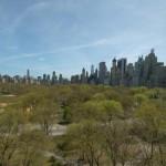 25 Central Park West, The Century