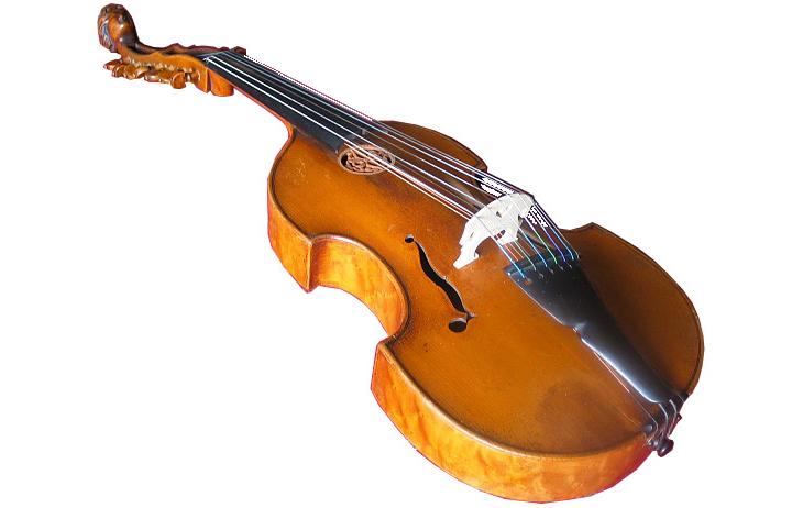 viola, violas, viola design