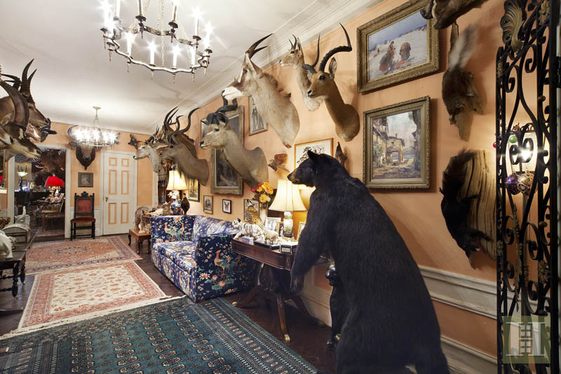 211 Central Park West 3J, taxidermy apartment, apartment interior, with animals