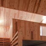The Polygon Sculpture Studio, Hague, double-gable design, Jeffrey S. Poss, red cedar cladding