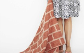 Brick Blanket, Thing Industries