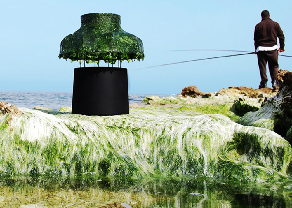 Superb Nir Meiri, Seeweeds Lampshade, Marine Light, Israeli Design, Tel Aviv, Algae Amazing Pictures