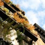 Flowerbox Building, NYC condo, 259 East 7th Street, Verdant Gardens Design, Landscape Architecture