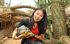 Sue Chin AIA, Wildlife Conservation Society