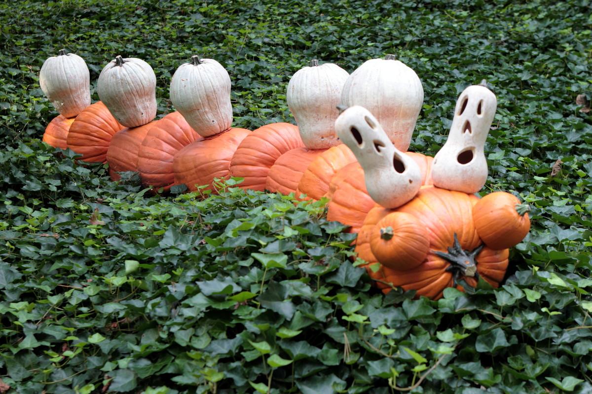 Ray Villafane, Haunted Pumpkin Garden, New York Botanical Garden