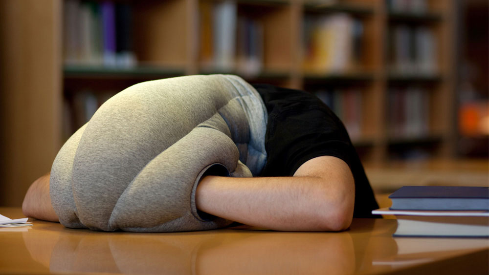 banana studio, napping at work, napping arm pillow, kawamura-ganjavian