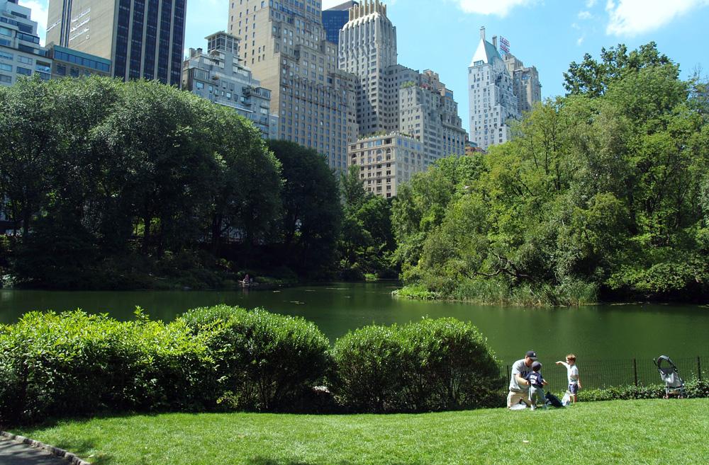 lower central park, central park