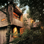 Bates Masi + Architects, Fire Island, Tree House, Cypress wood, fir wood, oak wood, roughly cut wood