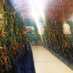 Sukkot Architecture, sukkah architecture, jewish architecture, where to celebrate sukkot nyc, sukkah design, NYC Jewish Theological Seminary sukkah 2014, Sukkot Architecture, sukkah architecture, jewish architecture, where to celebrate sukkot nyc, sukkah design
