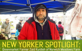 Norwich Meadows Farm, Union Square Greenmarket, Tompkins Square Greenmarket, Zaid Kurdieh, nyc greenmarket, where to get local produce, where to get organic produce, high tunnels, turkeys