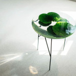 Olivia Lee, lotus pond table, Float, Asian style furniture, Industry+, plano-convex lens, surprising visual effects, coffee table