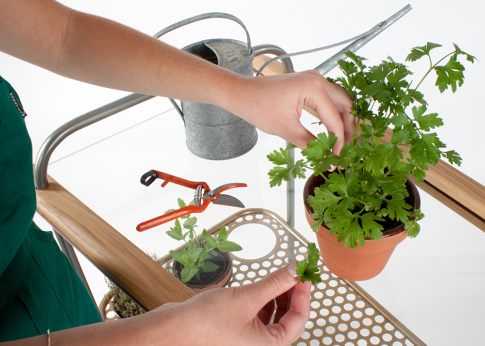 Andreu Carulla, CarRem, herbs trolley, restaurant trolley, trolley design, Mediterranean-style design, Spanish design, pick fresh herbs, Vilar Restaurant, seasoning food