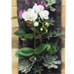 plant wall design vertical garden tile