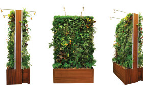 Plant Wall Design | 6sqft on garden ideas, garden hill designs, rock garden designs, garden landscaping, simple garden designs, landscaping designs, garden stone designs, garden designs and layouts, water garden designs, small japanese garden designs, garden path, garden flowers, garden gate designs, garden art made from recycled materials, garden barn designs, garden lattice designs, garden arbors, garden sign designs, garden retaining walls, greenhouse designs,
