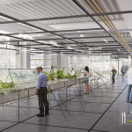 Organic Grid+, Workplace of the Future