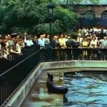 Mighty Manhattan – New York's Wonder City, Technicolor, vintage Manhattan, Central Park Zoo