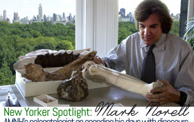 Mark Norell, American Museum of Natural History