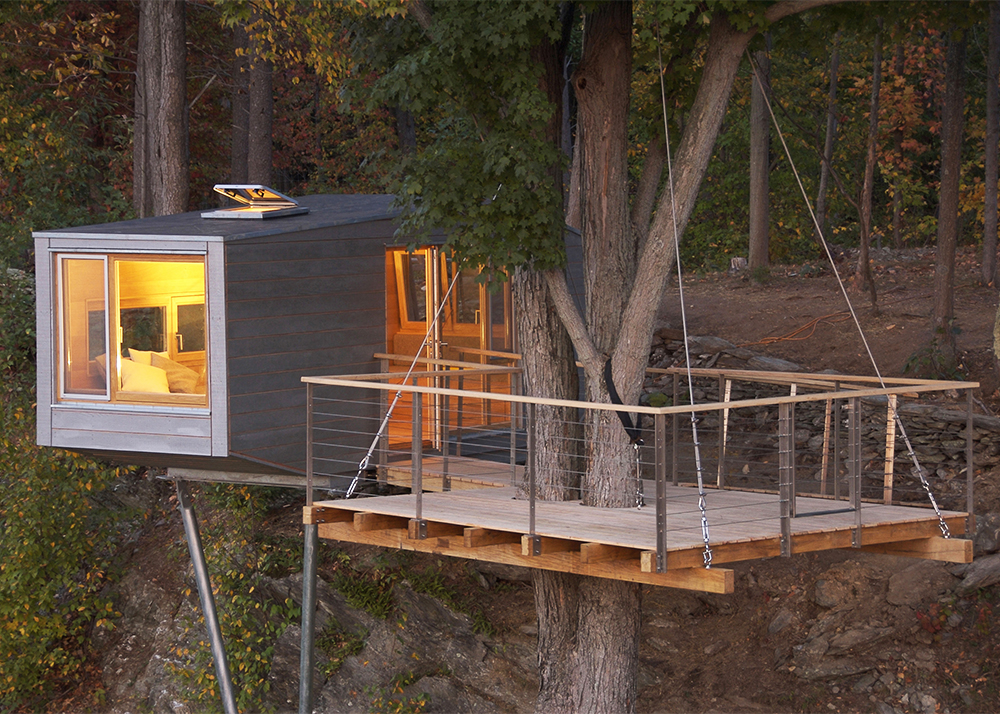 The cliff house is an eco treehouse wrapped around a maple for Architecture and design tree house