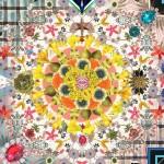Moooi Carpets, Photorealistic designs, Moooi Works, Casper Vissers, detailed carpets, DIY, bespoke design, Ross Lovegrove, seaweed rug