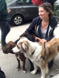 sarah brasky foster dogs nyc