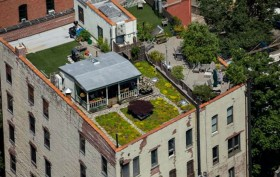 719 Greenwich Street rooftop, NYC green roof, David Puchkoff and Eileen Stukane