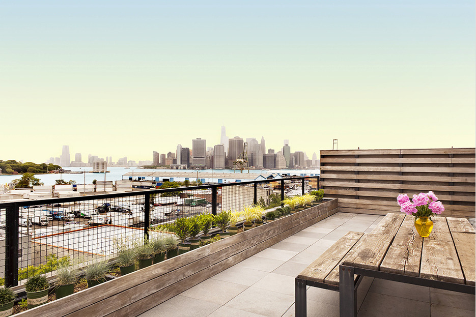 25 Carroll Street, roof deck, brooklyn