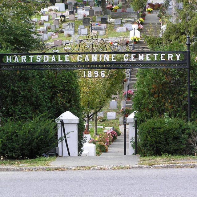 Did you know the world's oldest pet cemetery is in Westchester, New York?