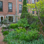 121 Lincoln Place, park slope, garden, brownstone