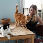 Girls and Their Cats, BriAnne Wills, cat photography, internet cats