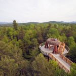 Wild Walk, Wild Center, Charles P. Reay, upstate nature walks, Adirondacks,