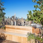 302 West 12th Street, deck, roof