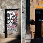 Kristy Chatelain, Brooklyn Changing, brooklyn gentrification, brooklyn hipsters