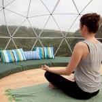 garden igloo, geodesic dome, outdoor oasis, greenhouse