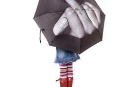 flip the bird umbrella, fuck you umbrella