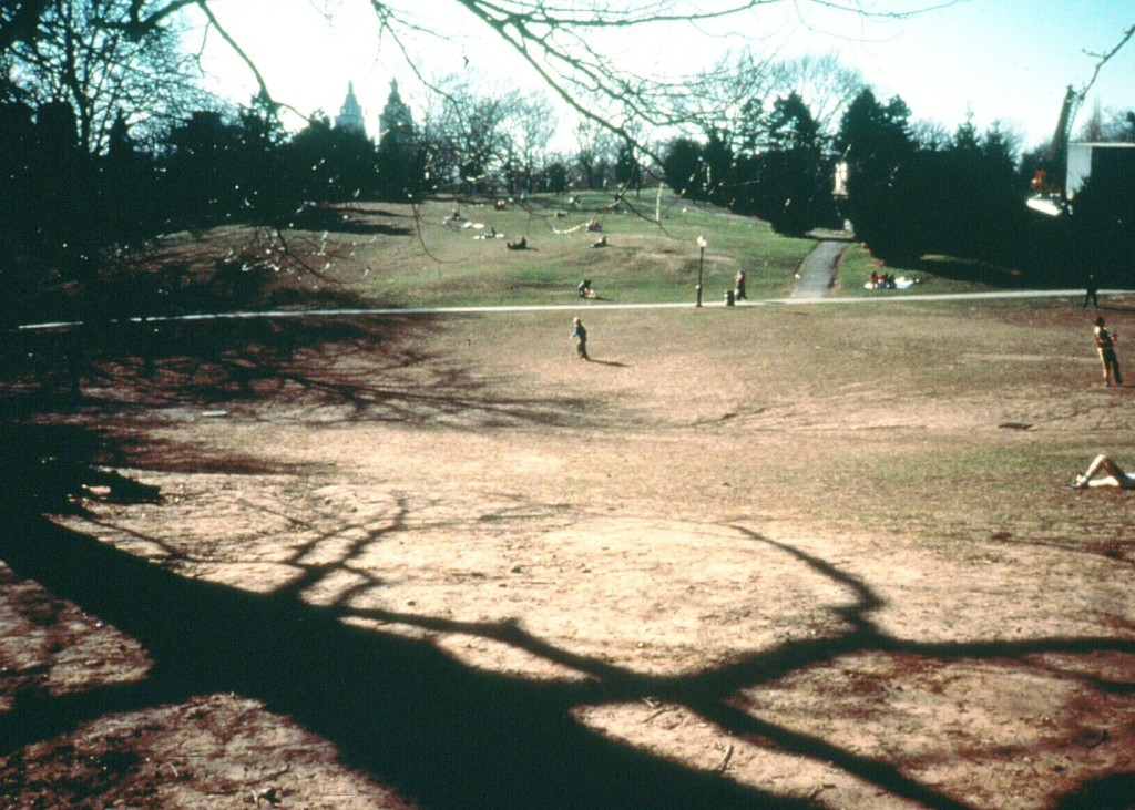 Central Park Cedar Hill, Central Park Conservancy, Central Park 1980s