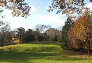 Central Park Cedar Hill, Central Park Conservancy