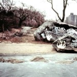 Central Park lake, Central Park 1980s, Central Park Conservancy