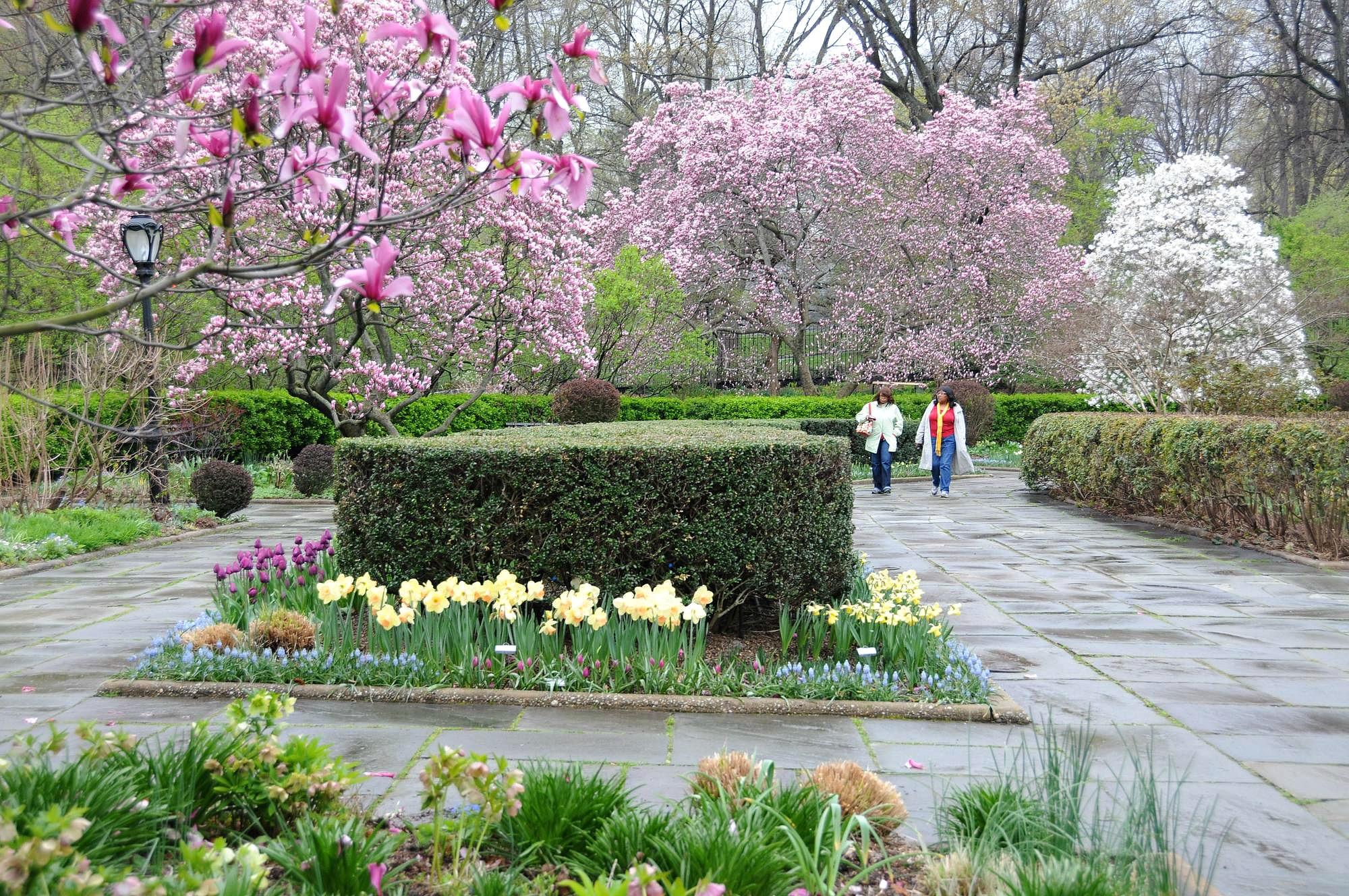 Central Park Conservatory Garden, Central Park Conservancy