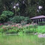 Central Park-Hearnshead-today