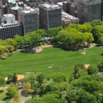 Central Park East Meadow, Central Park Conservancy