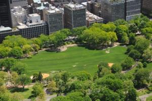 Central Park East Meadow, Central Park Conservancy