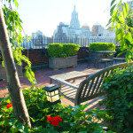 242 East 19th Street, roofdeck, co-op, views, landscaped terrace