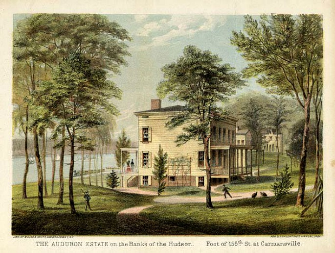 Carmansville, John James Audubon, Minniesland, Hamilton Heights history,