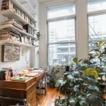 138 Baxter Street, office, living room, loft, rental
