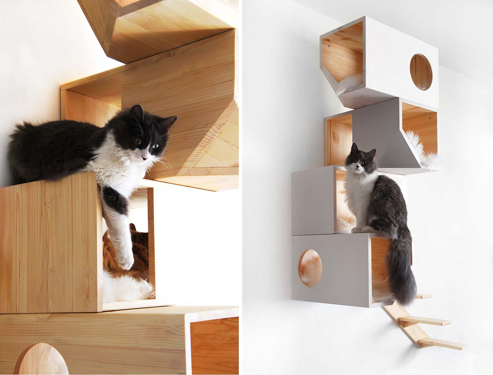 Catissa cat tree doubles as stylish wall art 6sqft - Contemporary cat furniture ideas ...